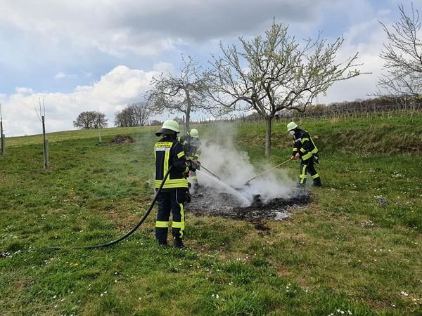 BRAND vom 12.04.2021  |  (C) Feuerwehr Malschenberg (2021)